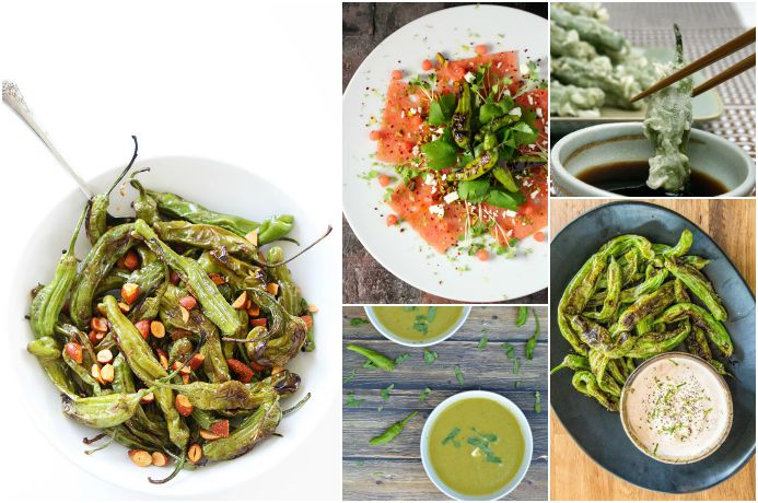 9 shishito pepper recipes from easy to outrageous: How to prepare the hottest (ha) new veggie these days.