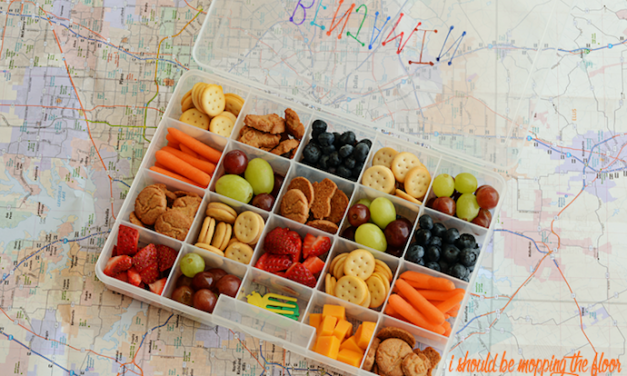The best travel snack recipes and ideas, to make getting there a breeze.