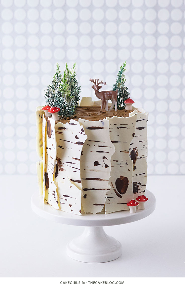 Ways to make over a store-bought cake: Birch Log Cake | The Cake Blog