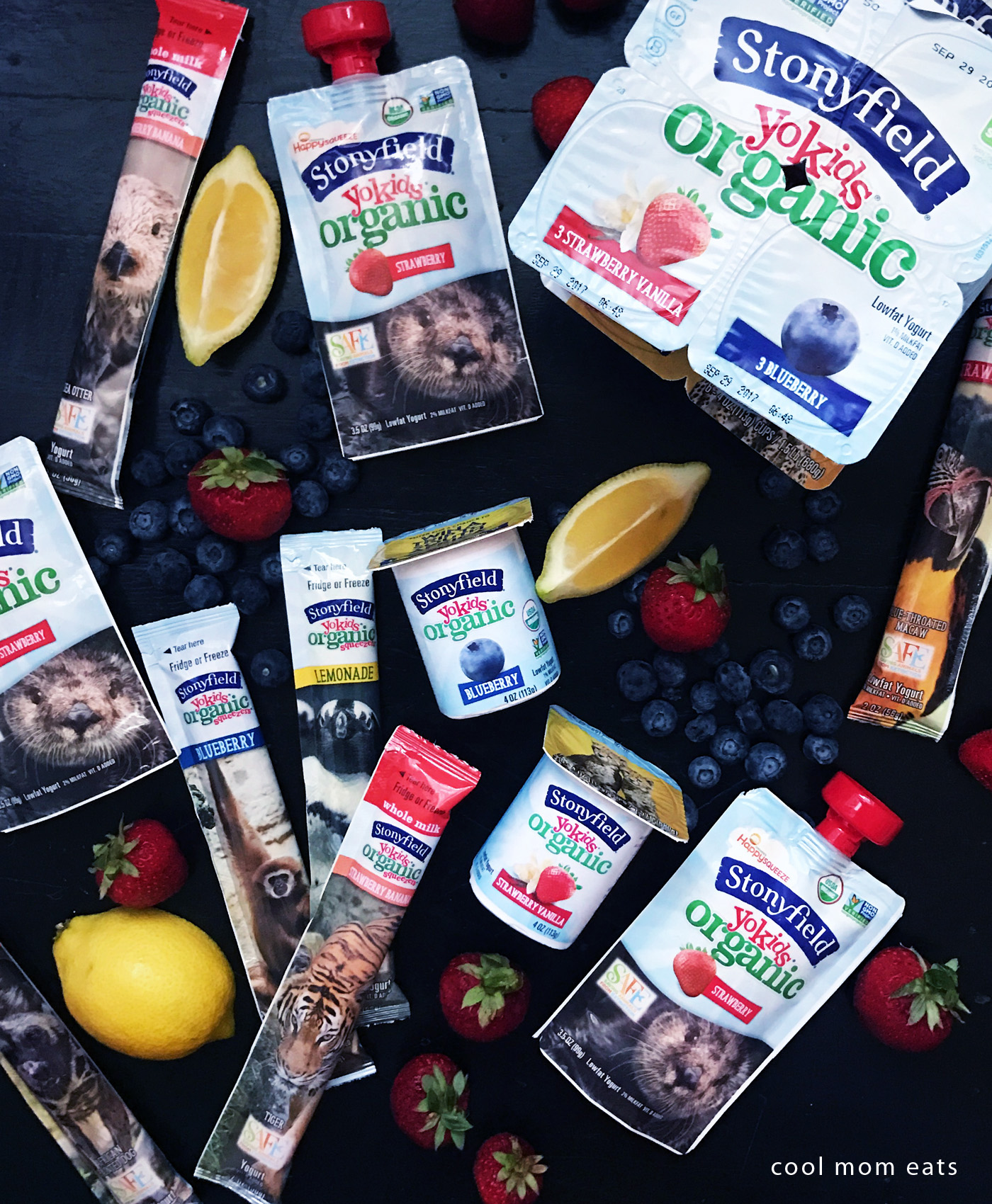 After school snacks that are lower in sugar, but still feel like a treat: Stonyfield YoKids at Cool Mom Eats [sponsor]