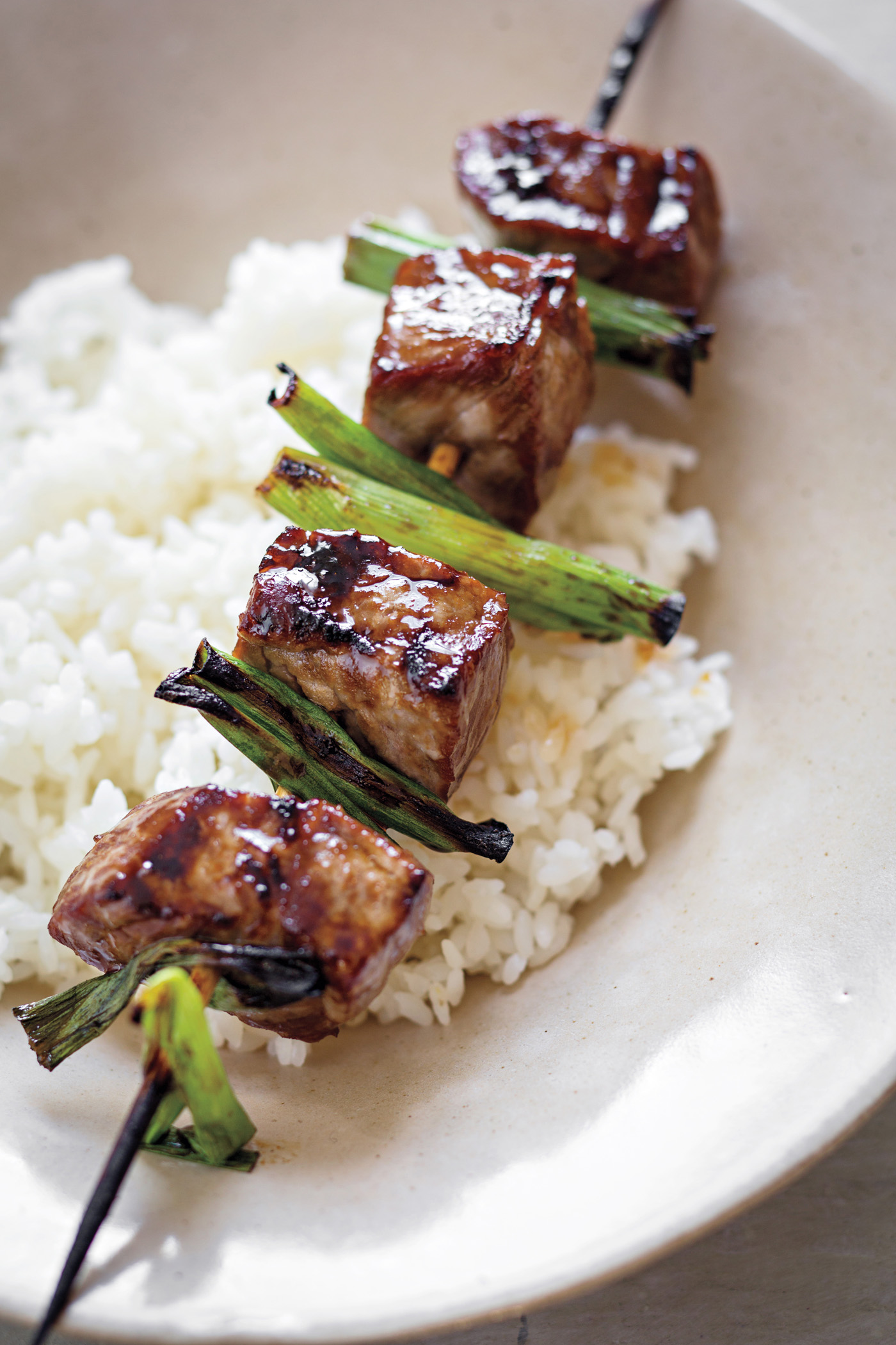 Teriyaki Sauce recipe from The Dinner Plan cookbook by Caroline Campion and Kathy Brennan | featured at Cool Mom Eats (Photos by Maura McEvoy)