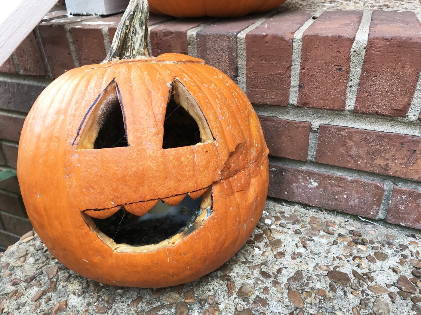 How to keep your jack-o-lantern from rotting this Halloween. Finally: Answers!! | Cool Mom Eats