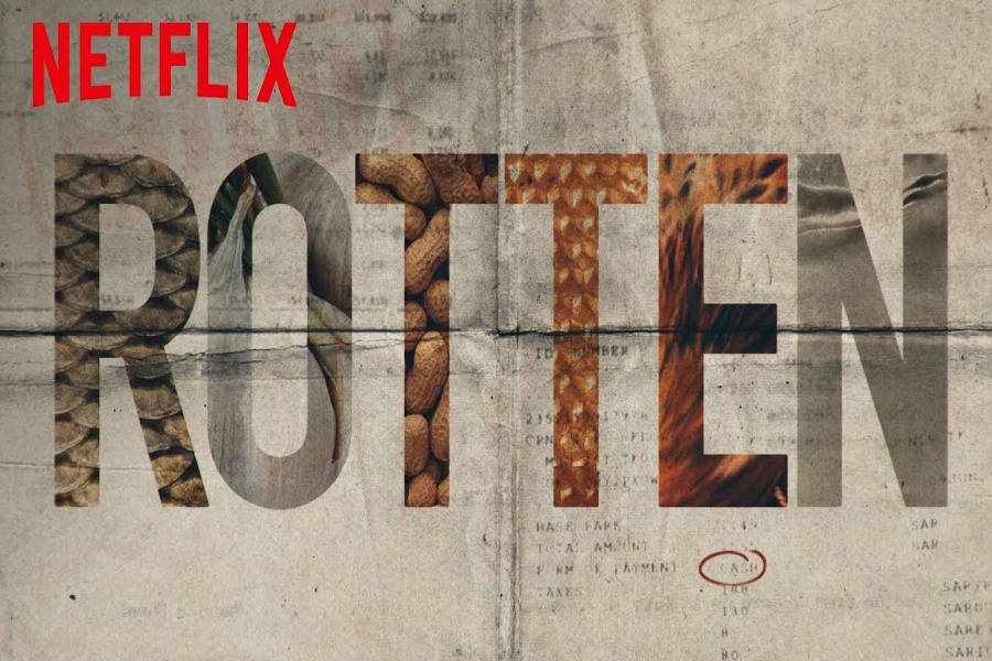 Netflix takes a look at peanut allergies in its new food doc series, Rotten.
