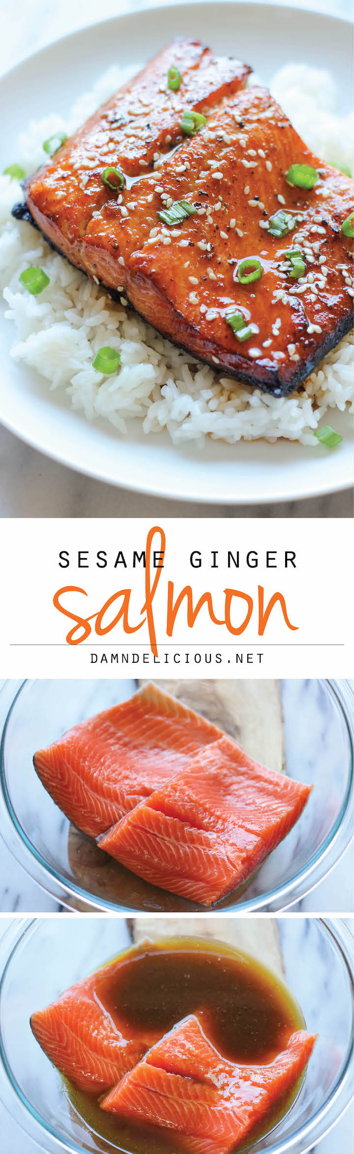 30-minute marinades: Sesame Ginger Salmon 30-minute marinade | Damn Delicious
