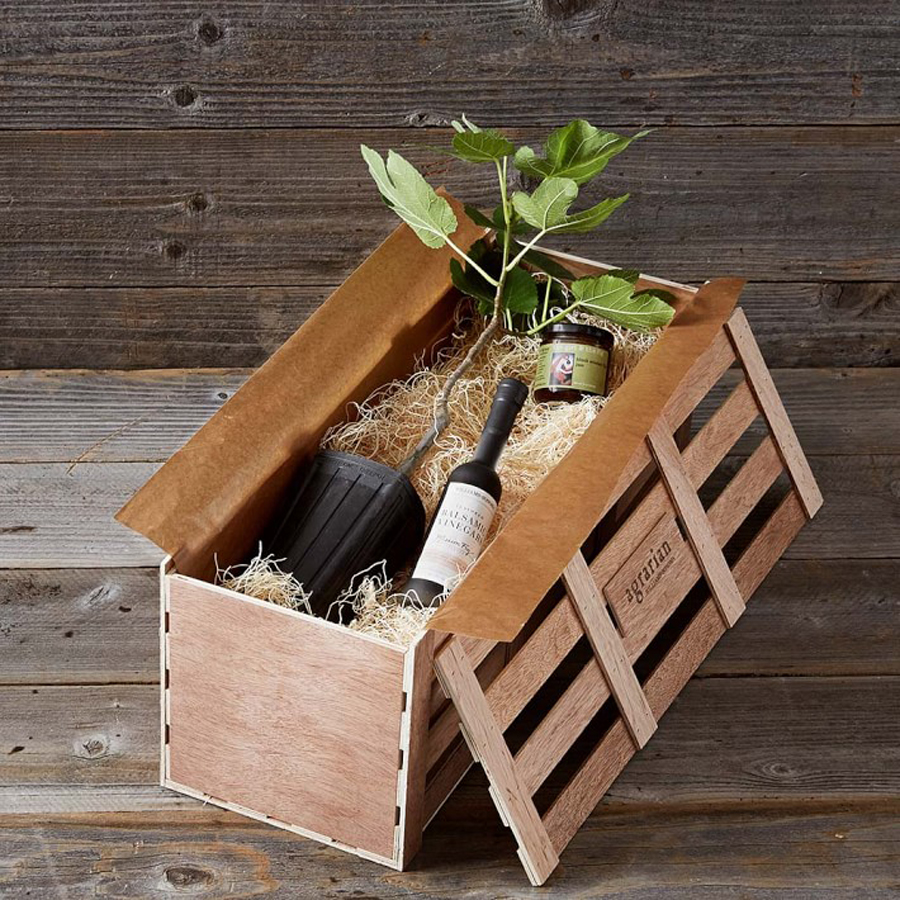 Gourmet Father's Day Gifts: Fig Balsamic Crate