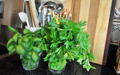 The best way to store fresh herbs so they last longer: 2 simple solutions.