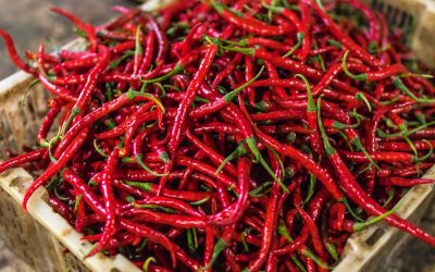 Do spicy foods actually keep you cool? Here's the deal.