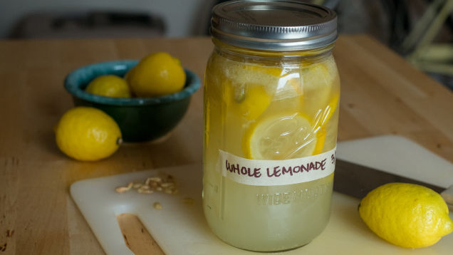Lemonade Hacks: Whole lemonade by AA Newton for Lifehacker