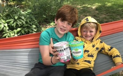 Healthy ice cream brands: Here are 2 we're gobbling up this summer.