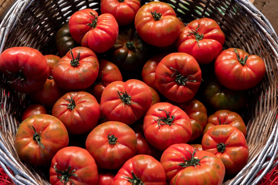 How to use up overripe tomatoes – and bruised ones too! | Cool Mom Eats
