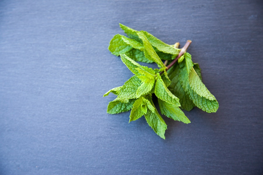 12 creative, unexpected ways to use extra mint from your garden this summer