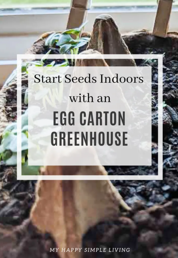 Egg Carton Greenhouse from My Happy Simple Living