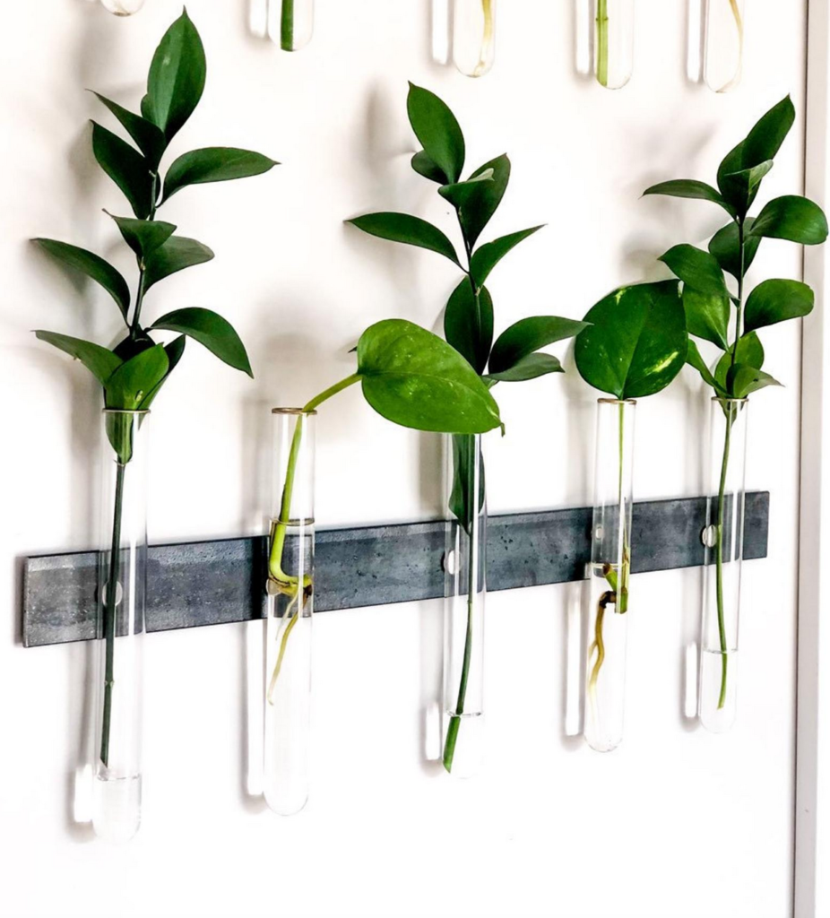 How to start an indoor herb garden: Propagation Station from Etsy